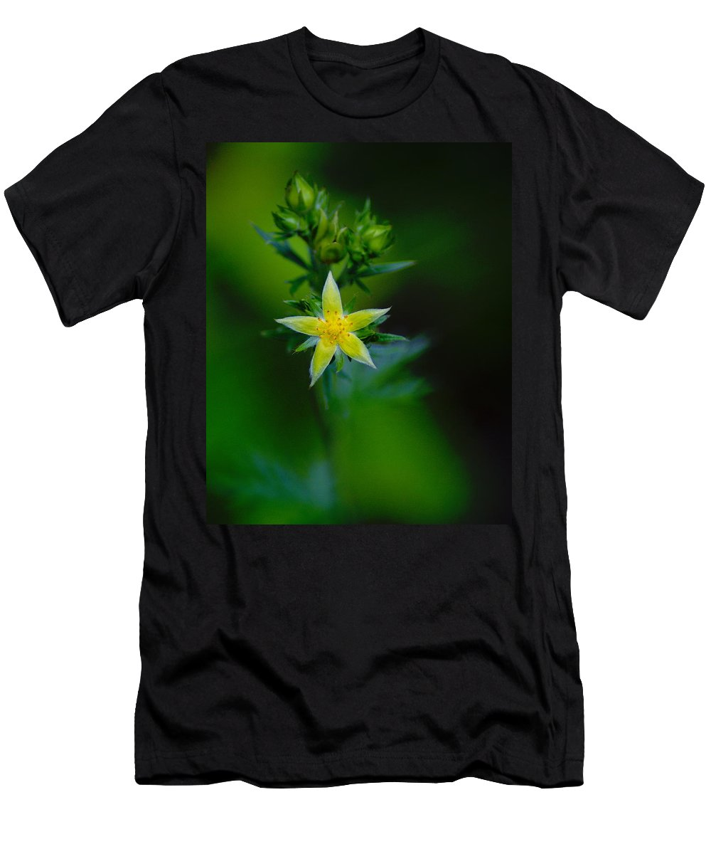Flowers Men's T-Shirt (Athletic Fit) featuring the photograph Starflower by Ben Upham III