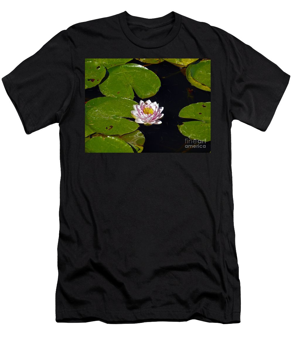 America Men's T-Shirt (Athletic Fit) featuring the photograph Echo Park L A by Howard Stapleton