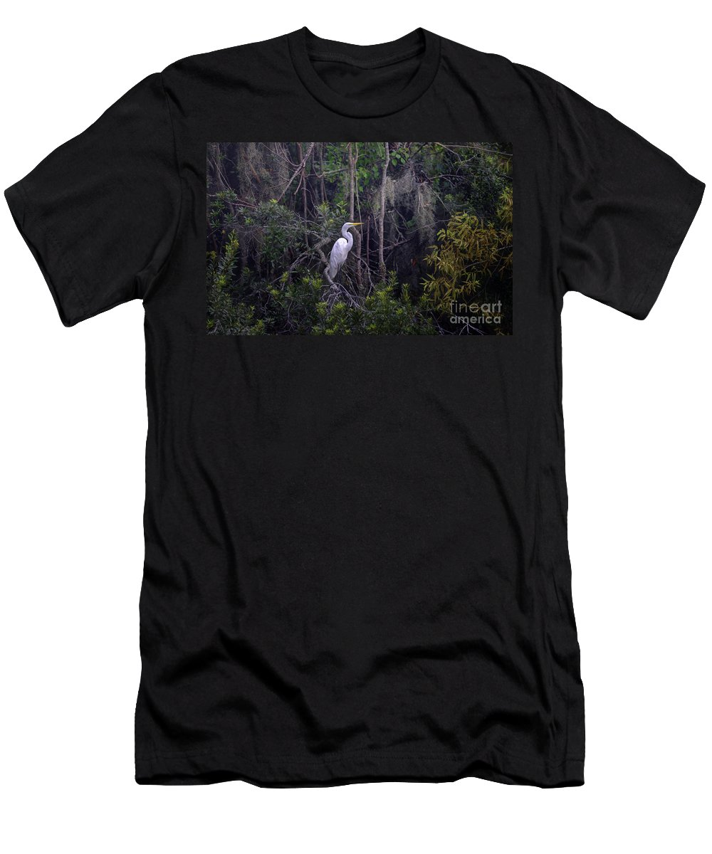 White Heron Men's T-Shirt (Athletic Fit) featuring the photograph Egret by Dale Powell