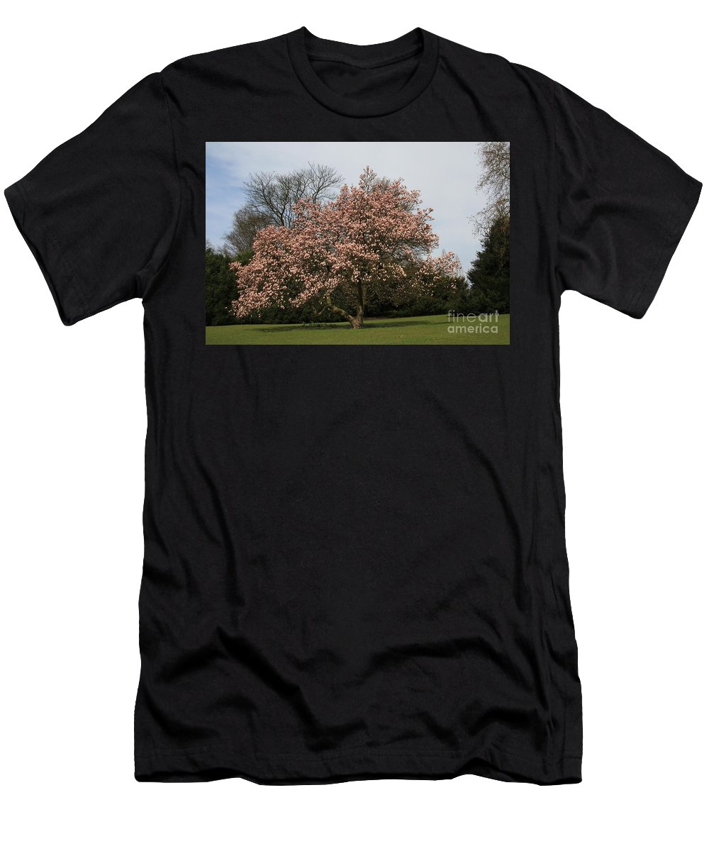 Magnolia Tree Men's T-Shirt (Athletic Fit) featuring the photograph Magnolia Tree by Christiane Schulze Art And Photography