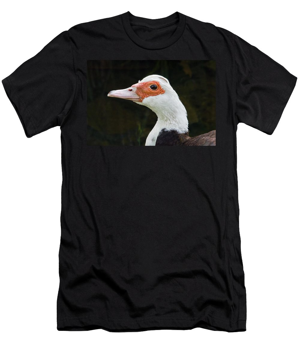 Duck Men's T-Shirt (Athletic Fit) featuring the photograph Muscovy Duck by Susie Peek