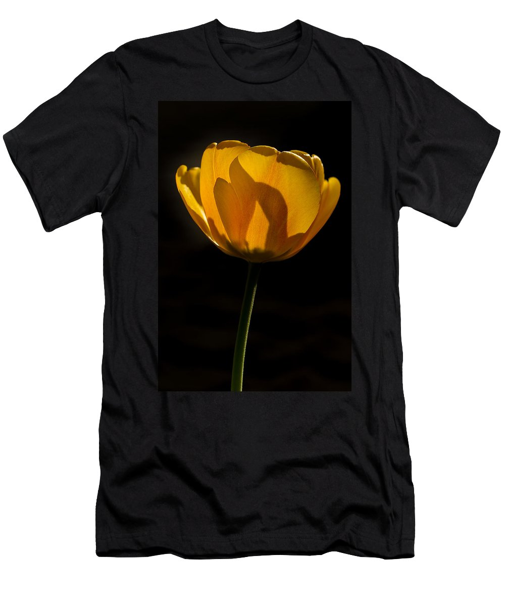 Bloom Men's T-Shirt (Athletic Fit) featuring the photograph Petals And Sun by Gaurav Singh