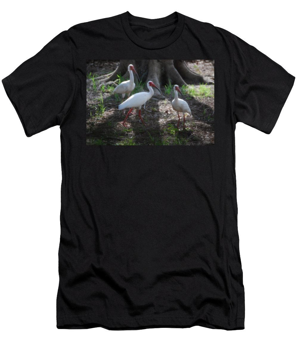 What's That?there's That Cat Again.suncoast Exterminators. Florida Men's T-Shirt (Athletic Fit) featuring the photograph White Ibis by Robert Floyd