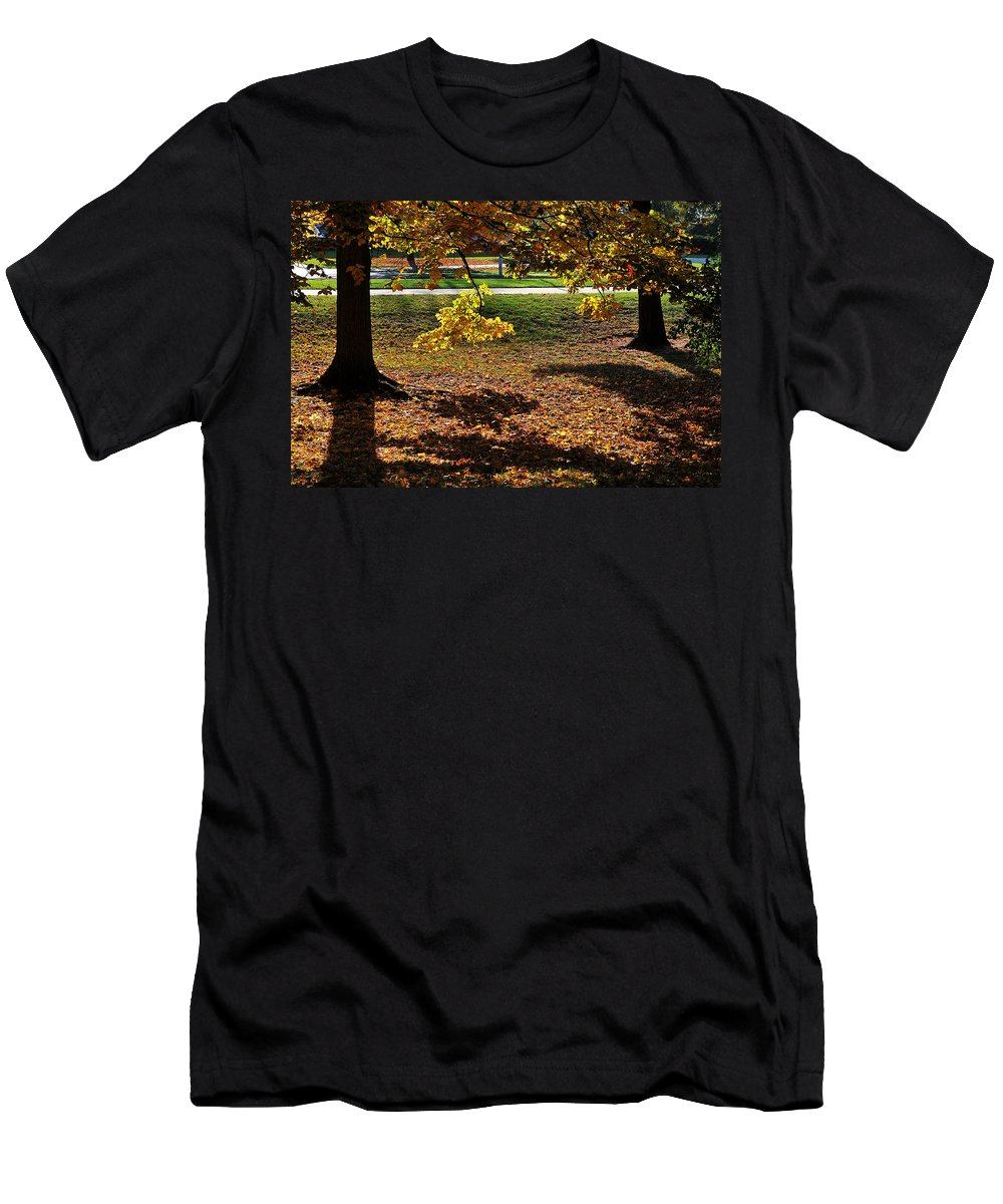 Trees Men's T-Shirt (Athletic Fit) featuring the photograph Autumn Path by Gene Tatroe