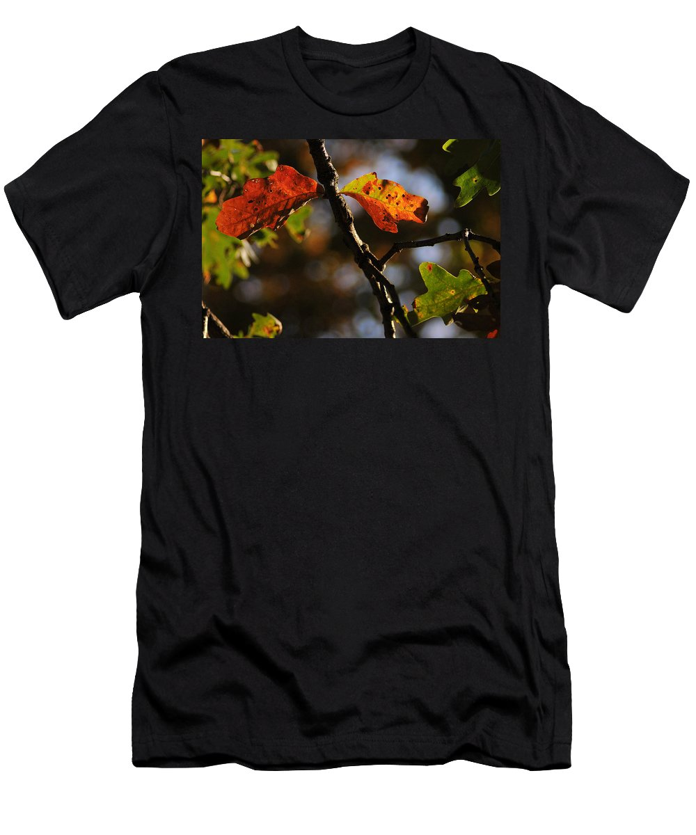 Fall Men's T-Shirt (Athletic Fit) featuring the photograph Two Leaves by Gene Tatroe