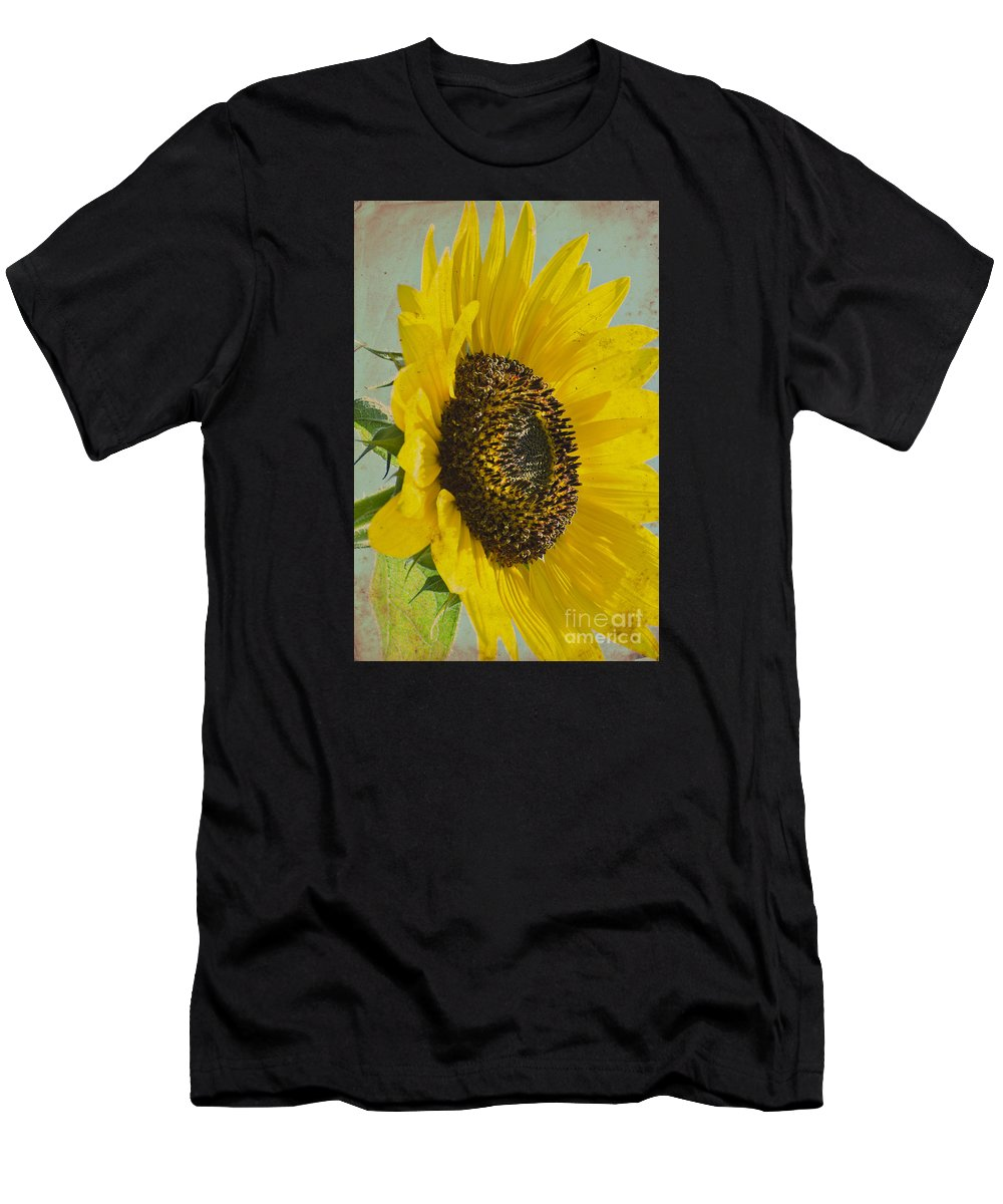 Sunflower Men's T-Shirt (Athletic Fit) featuring the photograph Sunflower by Jim And Emily Bush