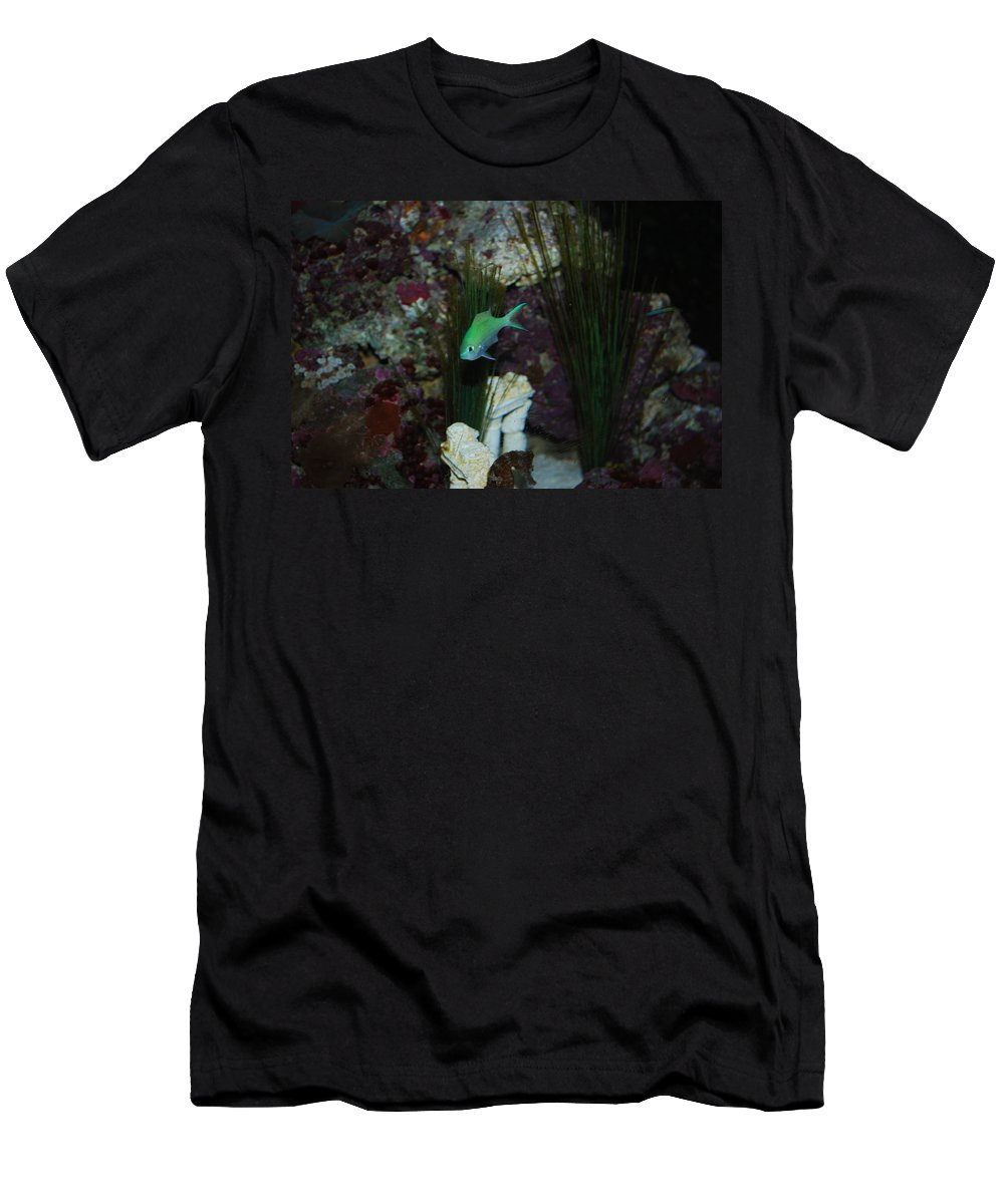 Taken Through Side Of Aquarium Men's T-Shirt (Athletic Fit) featuring the photograph Tropical Fish by Robert Floyd