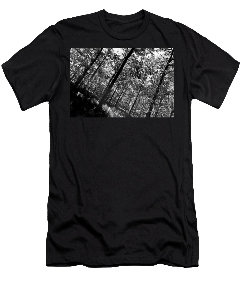 Tree Men's T-Shirt (Athletic Fit) featuring the photograph The Forest by David Pyatt