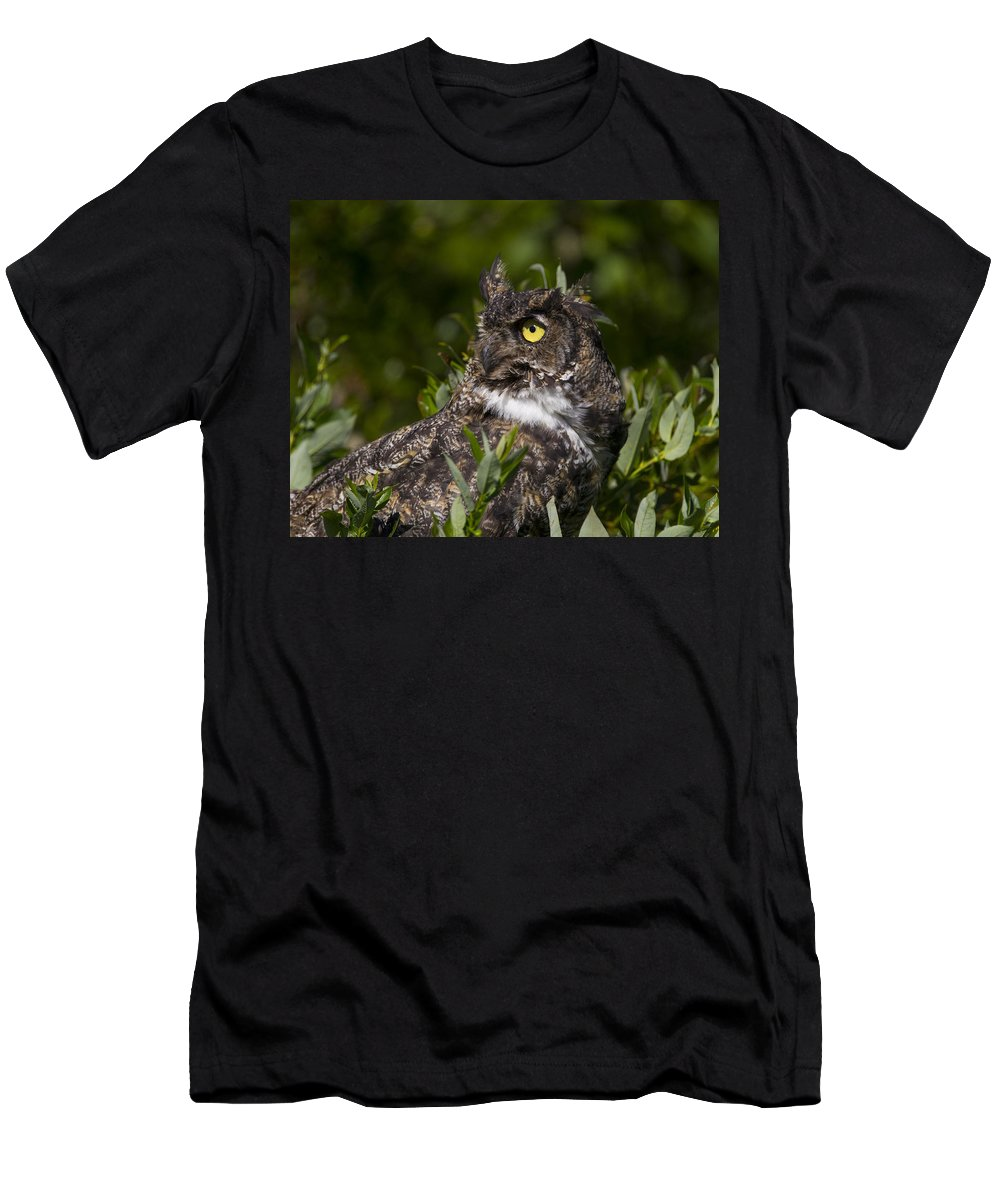 Doug Lloyd Men's T-Shirt (Athletic Fit) featuring the photograph Whats That by Doug Lloyd