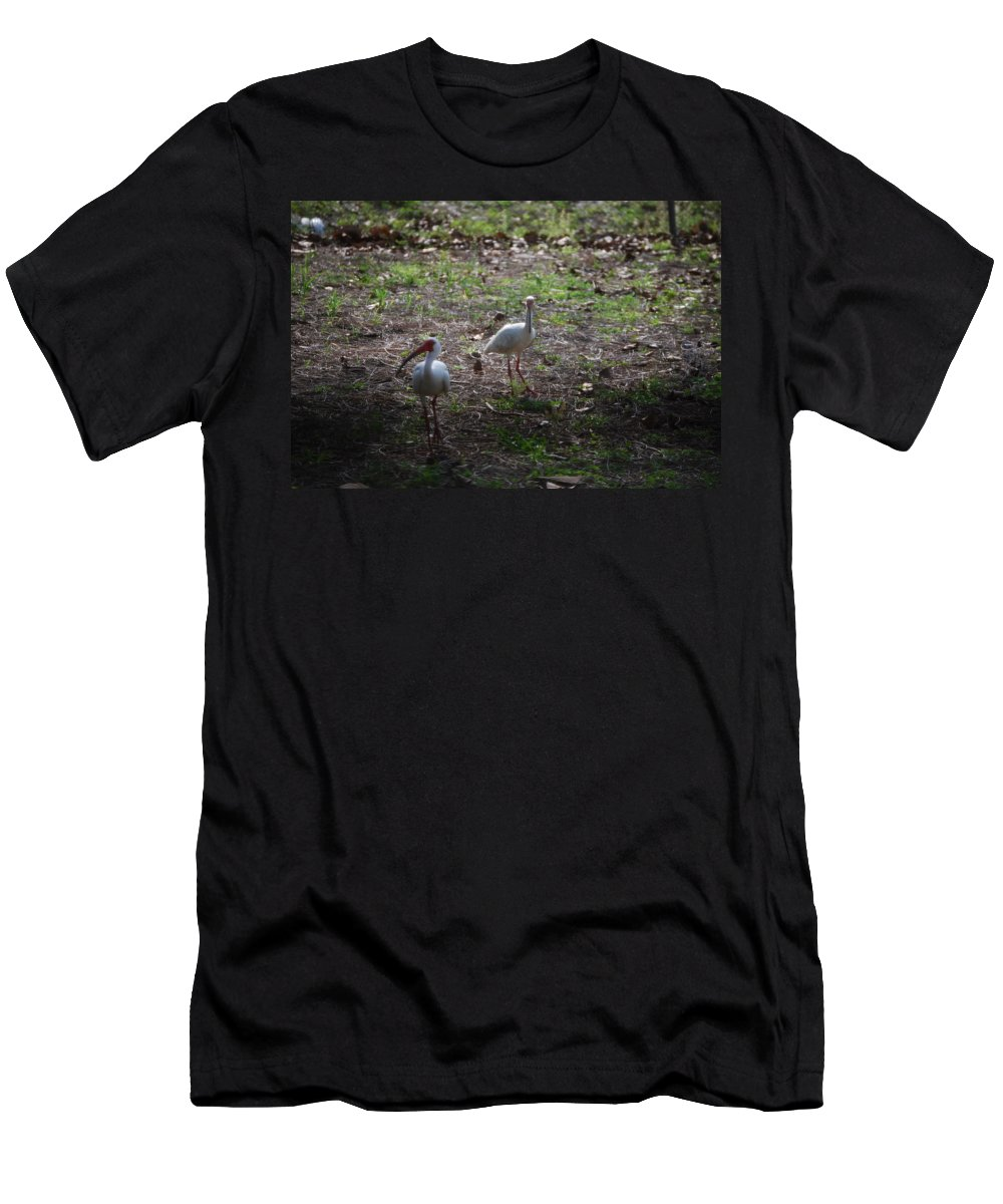 Checking Out My Yard Men's T-Shirt (Athletic Fit) featuring the photograph White Ibis by Robert Floyd