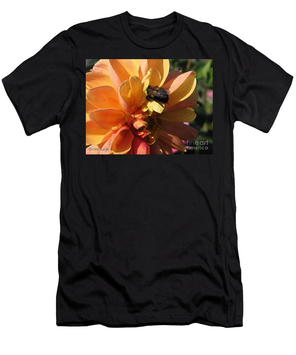 Dahlia Men's T-Shirt (Athletic Fit) featuring the painting Dahlia From The Showpiece Mix by J McCombie