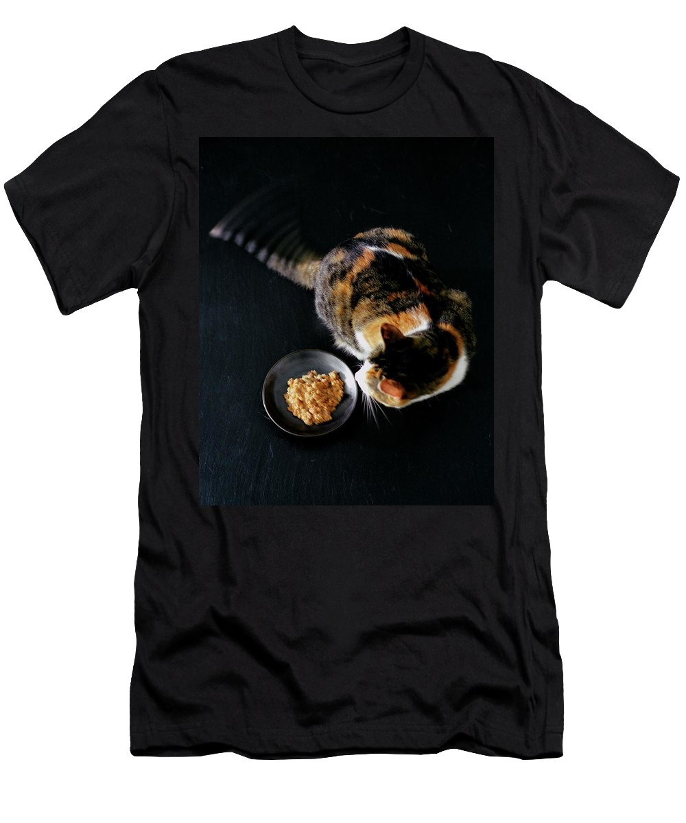 Cat T-Shirt featuring the photograph A Cat Beside A Dish Of Cat Food by Romulo Yanes