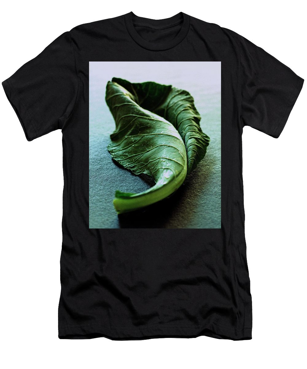 Nobody Men's T-Shirt (Athletic Fit) featuring the photograph A Collard Leaf by Romulo Yanes