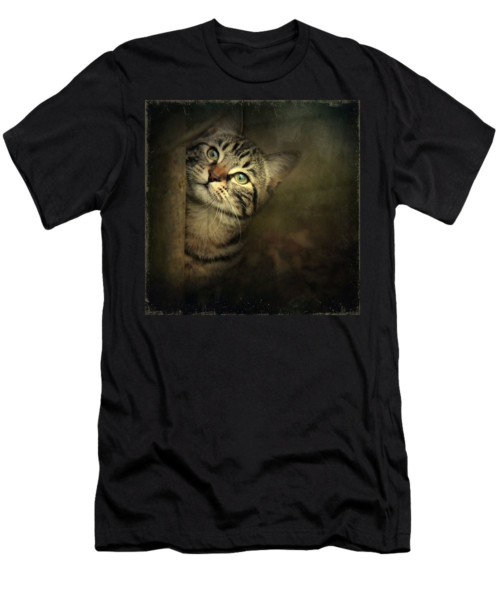 Kitten Men's T-Shirt (Athletic Fit) featuring the photograph A Little Shy by Annie Snel
