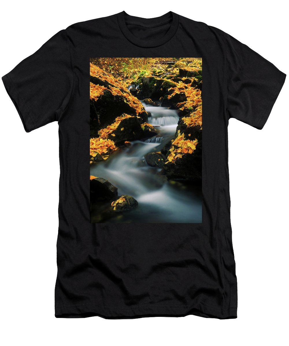 Autumn Men's T-Shirt (Athletic Fit) featuring the photograph A Mountain Stream Carves A Path by Keith Ladzinski