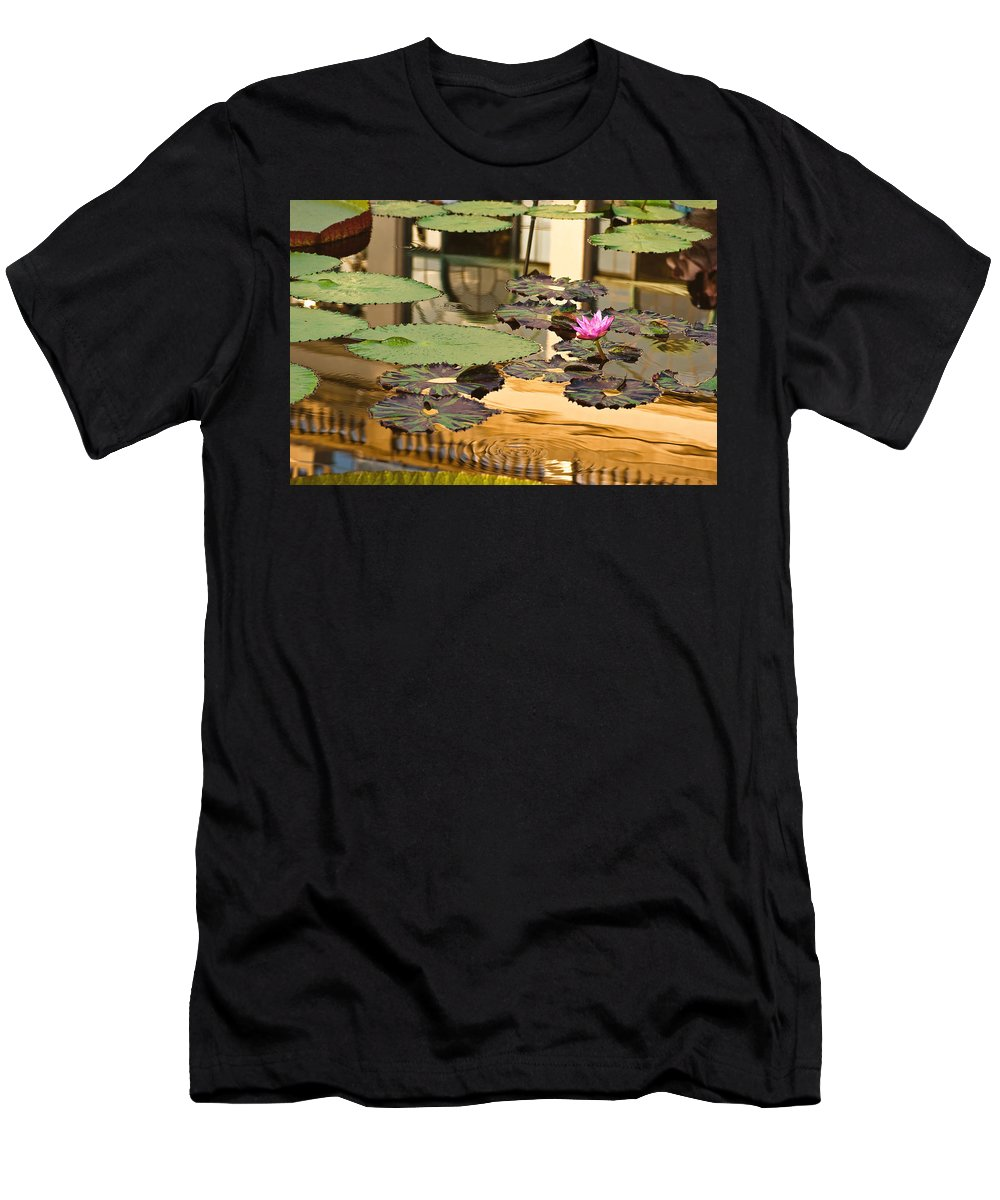 Longwood Gardens Men's T-Shirt (Athletic Fit) featuring the photograph A Reflection by Samantha Eisenhauer