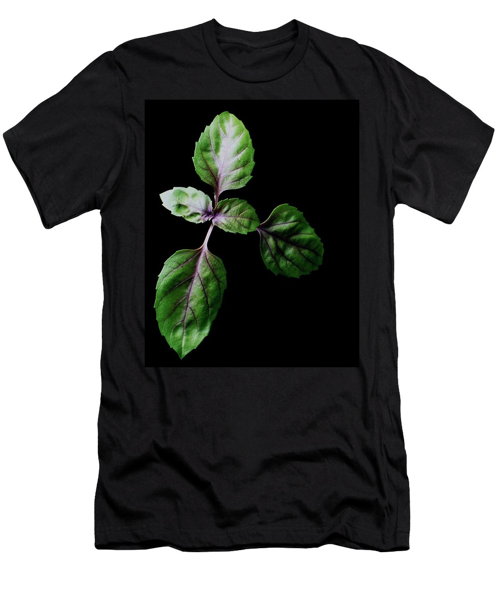 Herbs Men's T-Shirt (Athletic Fit) featuring the photograph A Sprig Of Basil by Romulo Yanes