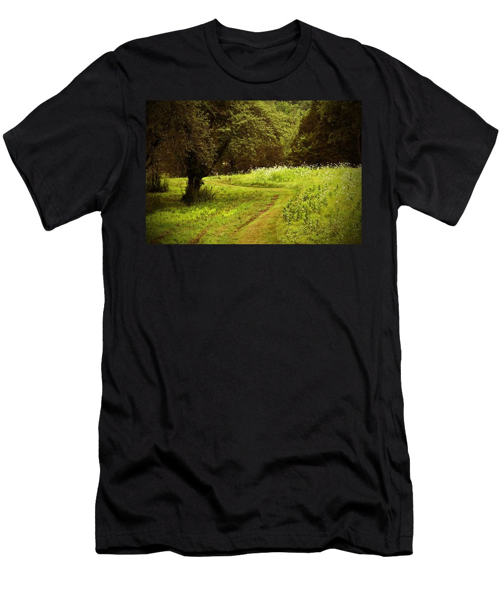 Summer Men's T-Shirt (Athletic Fit) featuring the photograph A Summer's Trail by Karol Livote