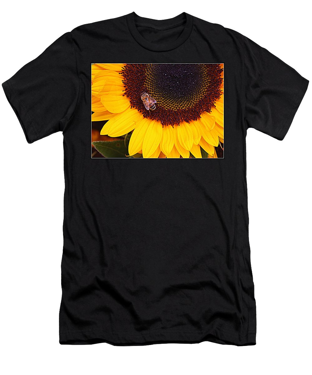 Sunflower Men's T-Shirt (Athletic Fit) featuring the photograph A Taste Of Sunshine by Dora Sofia Caputo Photographic Design and Fine Art