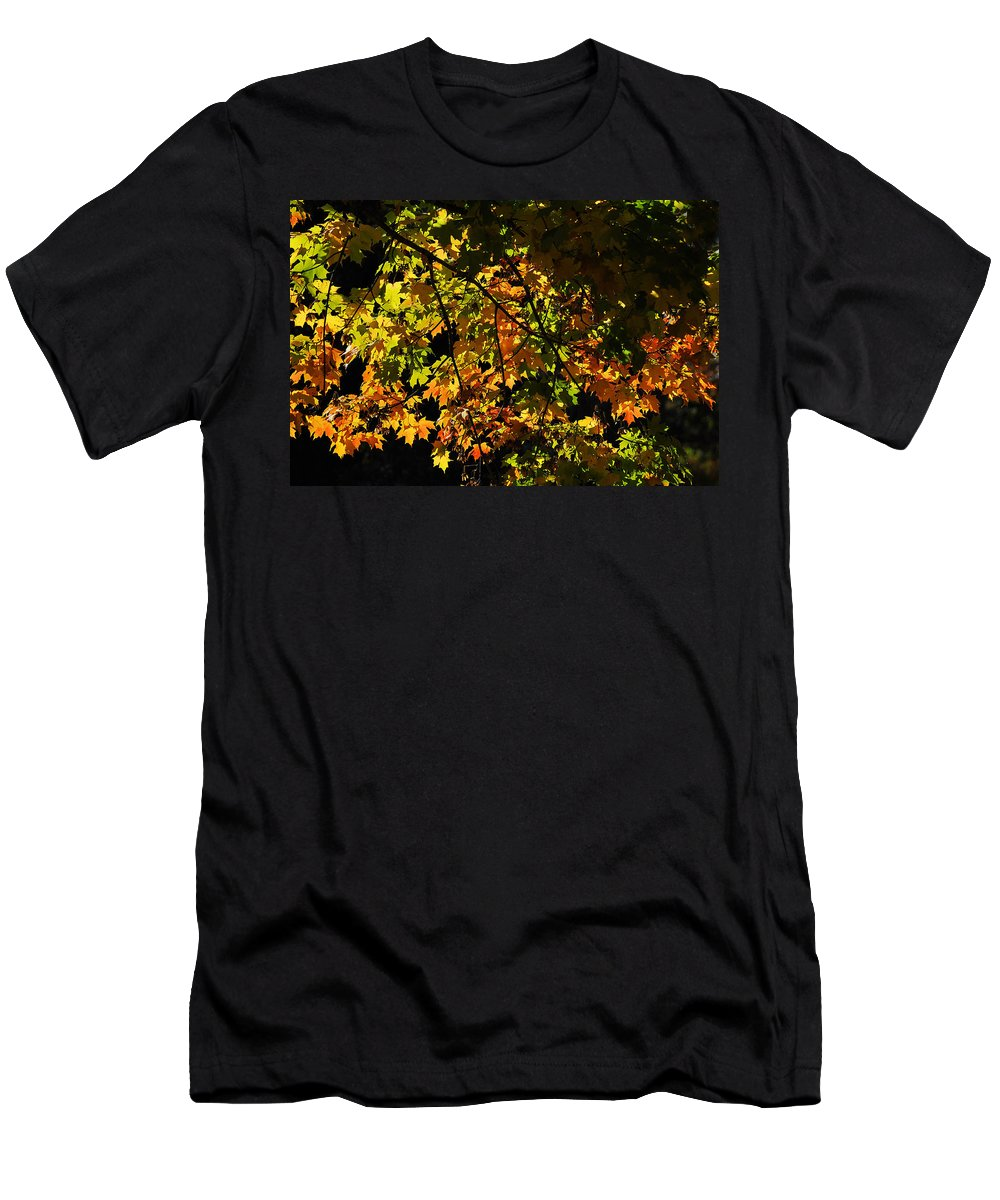Fall Men's T-Shirt (Athletic Fit) featuring the photograph A Touch Of Fall by Gene Tatroe
