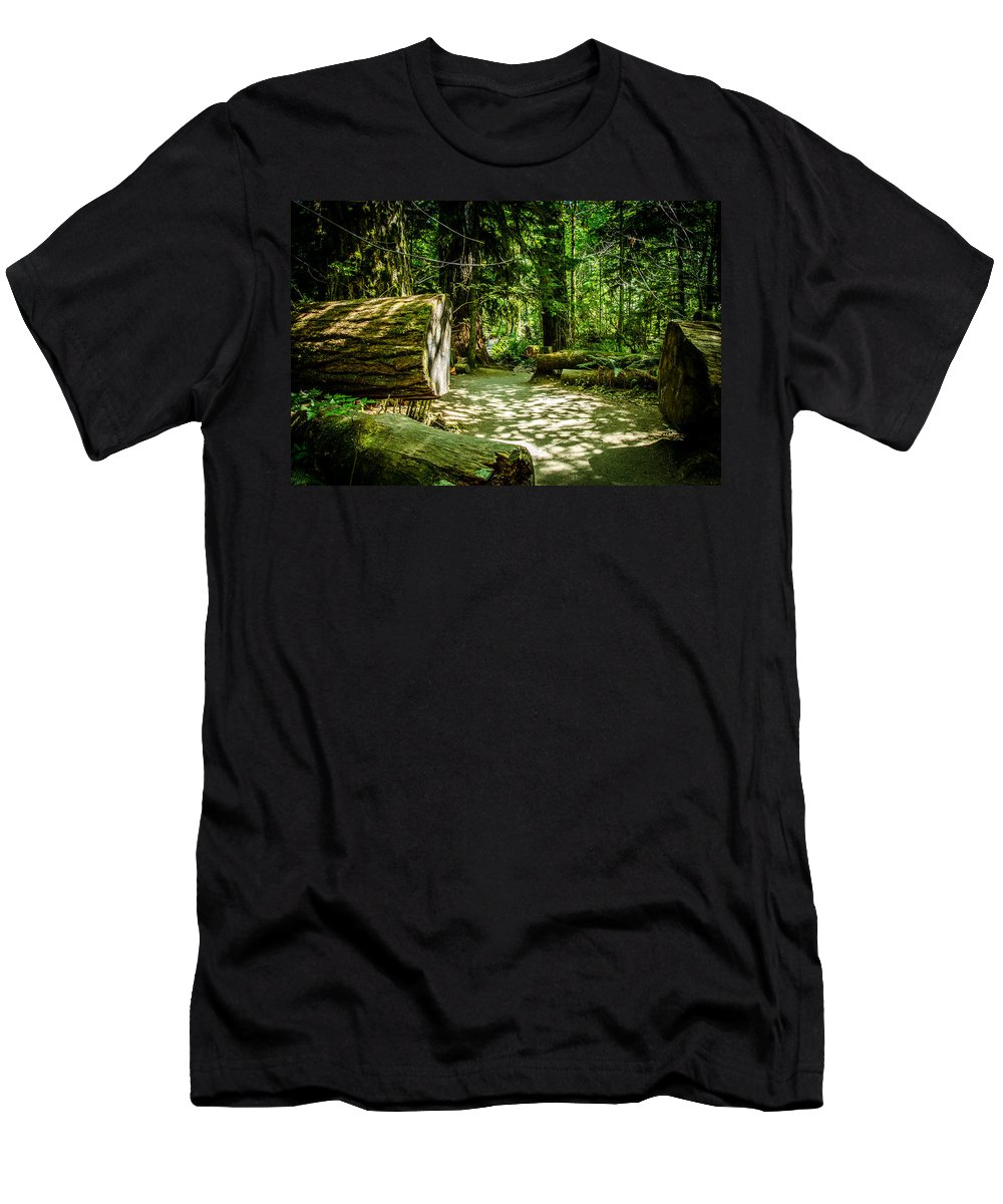 Old Growth Forest Men's T-Shirt (Athletic Fit) featuring the photograph A Walk Among The Giants Collection 3 by Roxy Hurtubise
