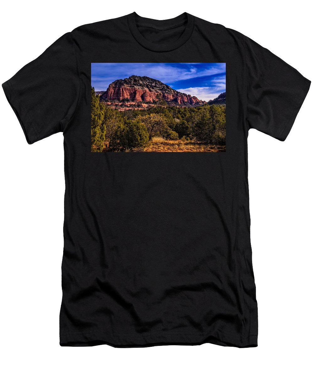 2014 Men's T-Shirt (Athletic Fit) featuring the photograph Above It All by Mark Myhaver
