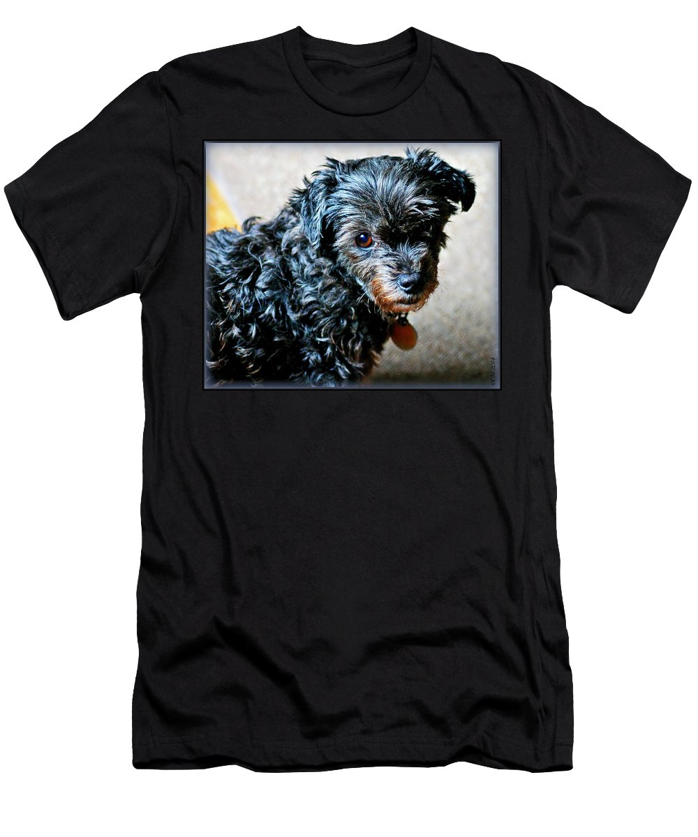 Dog Men's T-Shirt (Athletic Fit) featuring the photograph Abundant Love by Catherine Melvin