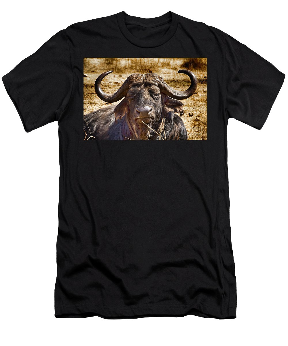 African Buffalo Men's T-Shirt (Athletic Fit) featuring the photograph African Buffalo V3 by Douglas Barnard