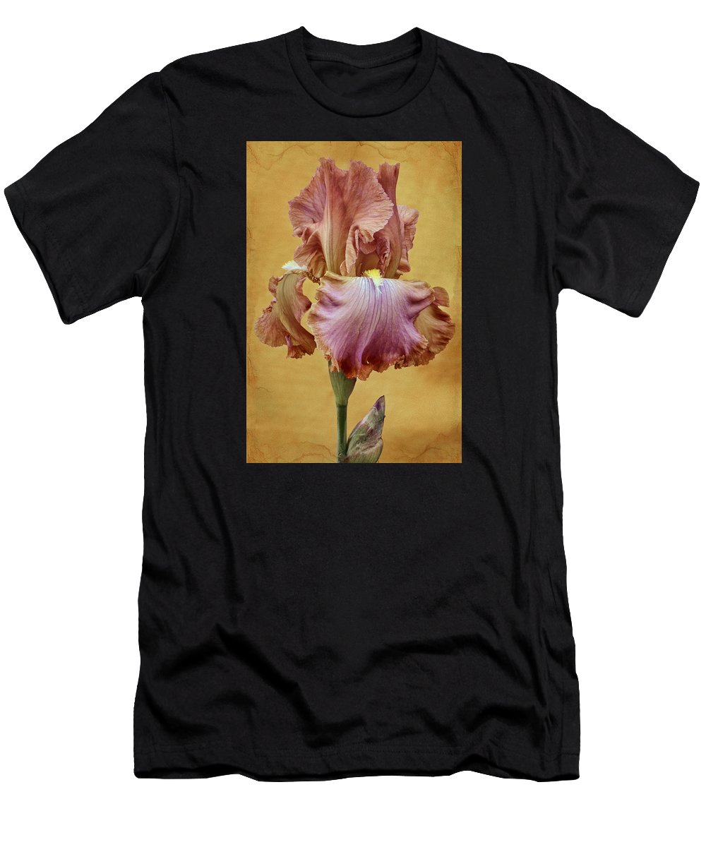 Bearded Iris Men's T-Shirt (Athletic Fit) featuring the photograph Afternoon Delight - 1 by Nikolyn McDonald