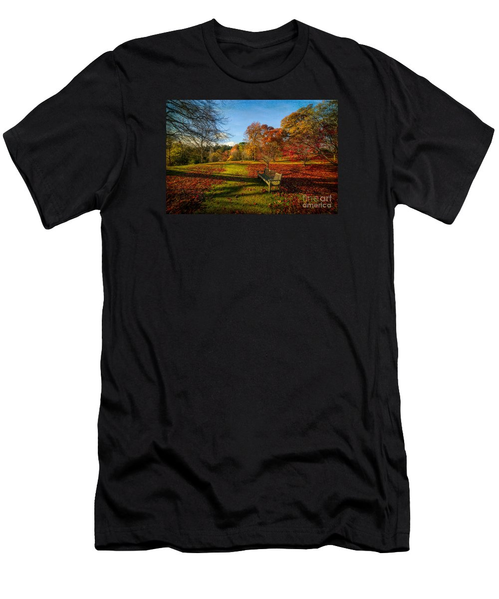 Autumn Men's T-Shirt (Athletic Fit) featuring the photograph Afternoon Shadows by Adrian Evans