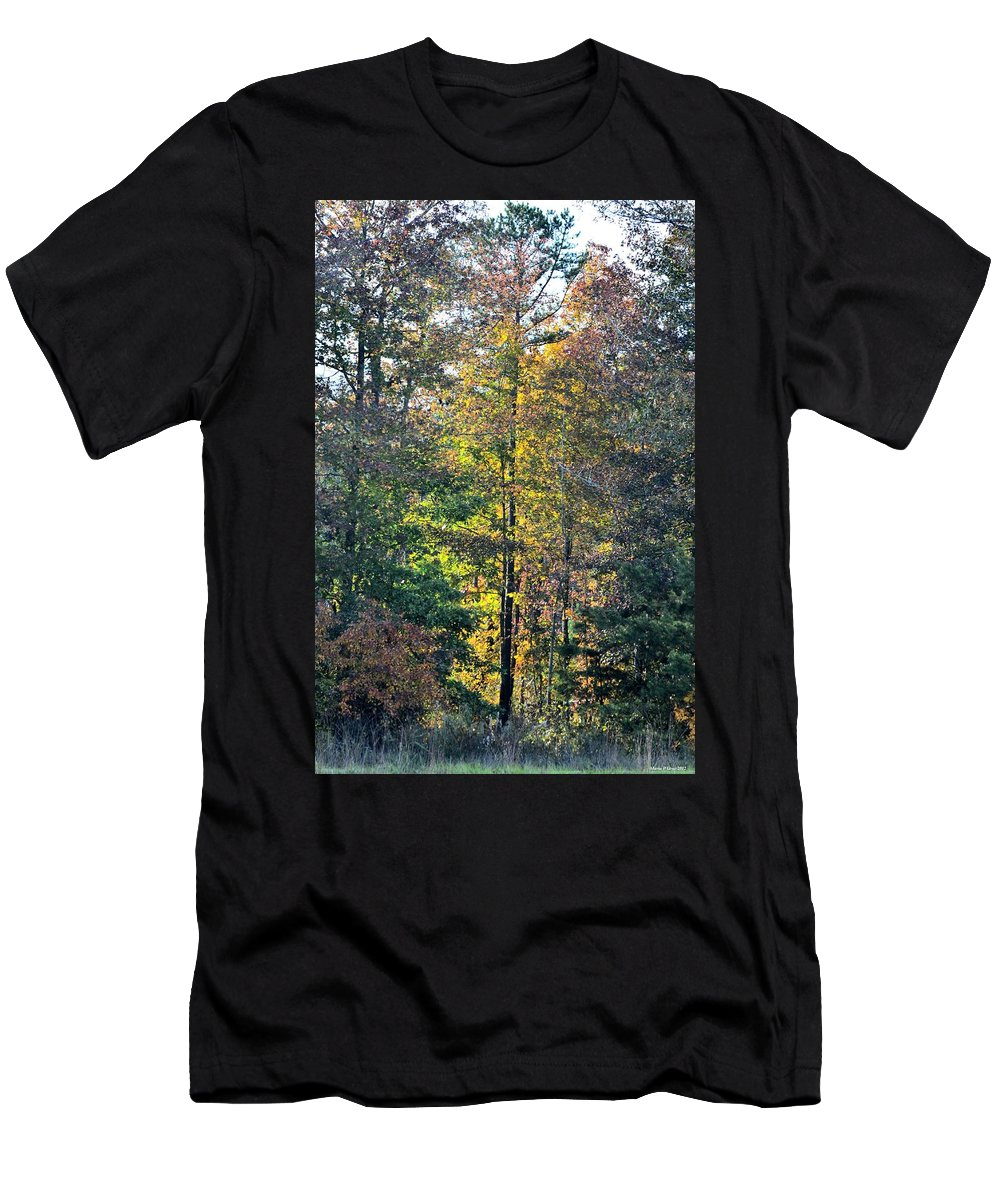 Alabama Forest In Autumn 2012 Men's T-Shirt (Athletic Fit) featuring the photograph Alabama Forest In Autumn 2012 by Maria Urso