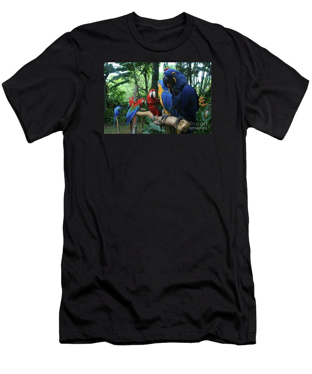 Macaw Men's T-Shirt (Athletic Fit) featuring the photograph Aloha Kaua Aloha Mai No Aloha Aku Beautiful Macaw by Sharon Mau