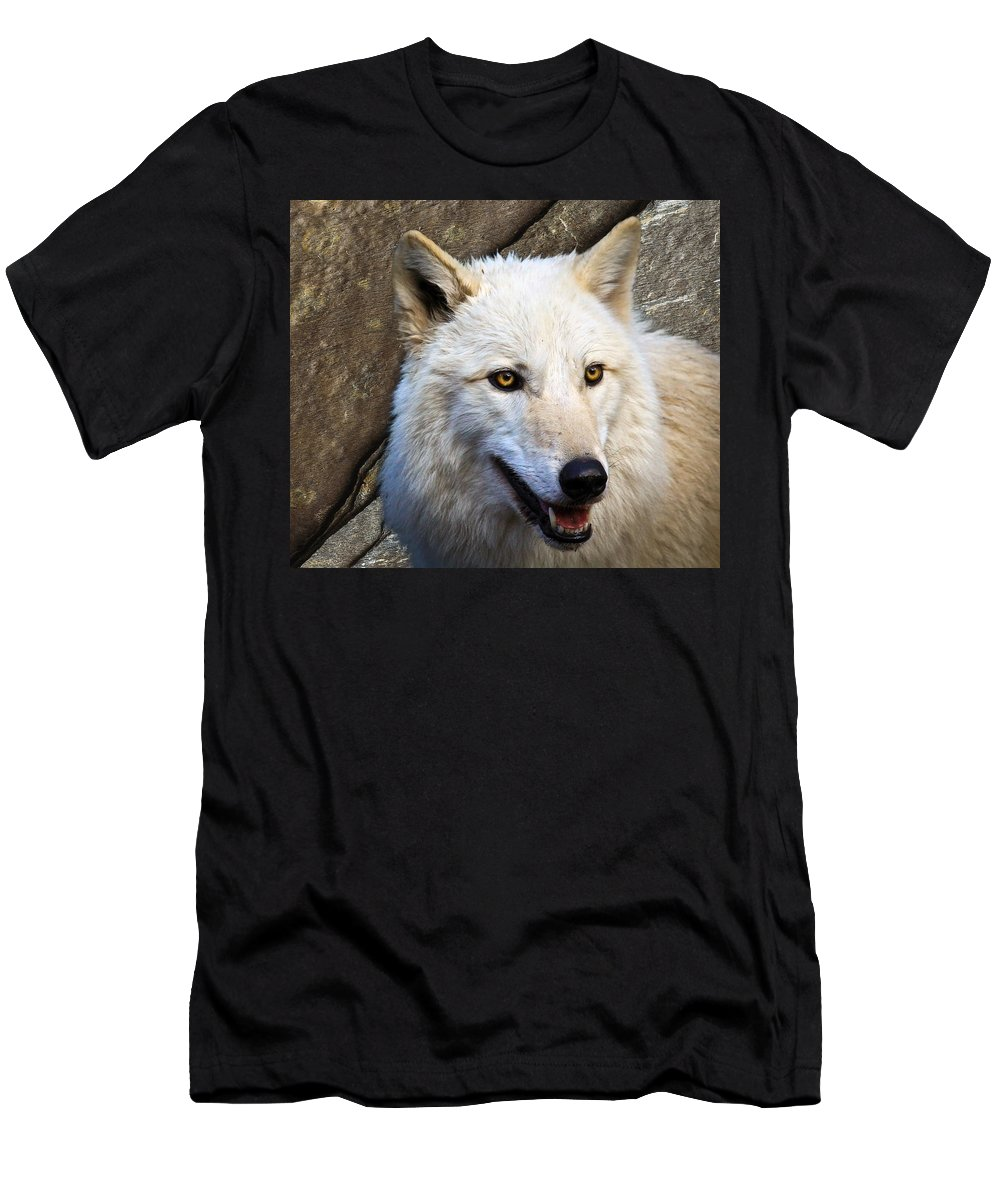 Wolf Art Men's T-Shirt (Athletic Fit) featuring the photograph Along The Wall by Steve McKinzie