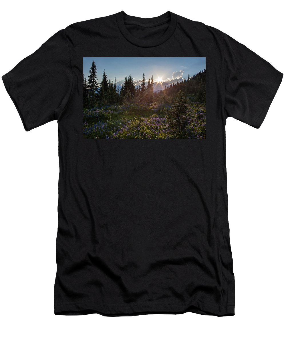 Rainier Men's T-Shirt (Athletic Fit) featuring the photograph Alpine Meadow Sunrays by Mike Reid