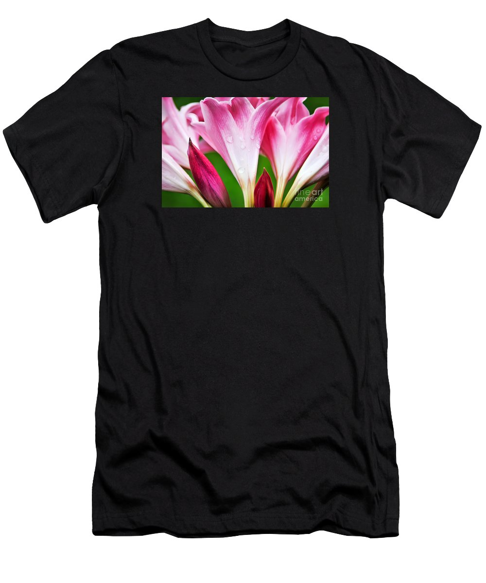 Amaryllis Men's T-Shirt (Athletic Fit) featuring the photograph Amaryllis Flowers And Buds In The Rain by David Perry Lawrence