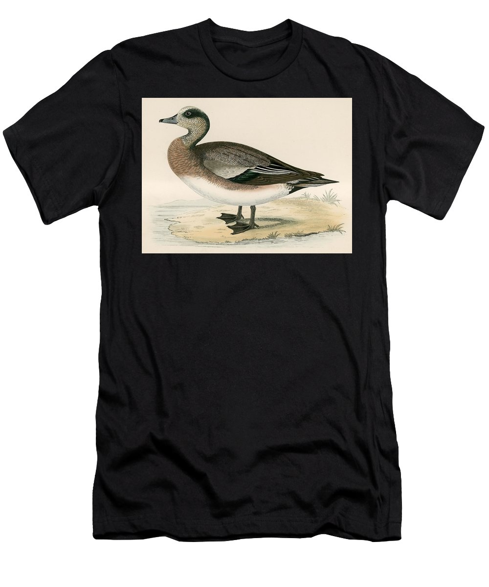 Duck Men's T-Shirt (Athletic Fit) featuring the painting American Wigeon by Beverley R Morris