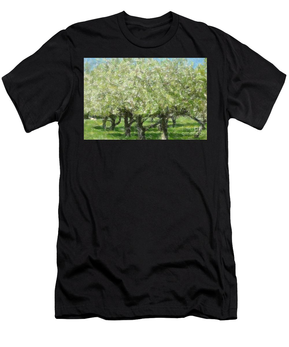 Apple Men's T-Shirt (Athletic Fit) featuring the photograph Apple Orchard by Kathleen Struckle