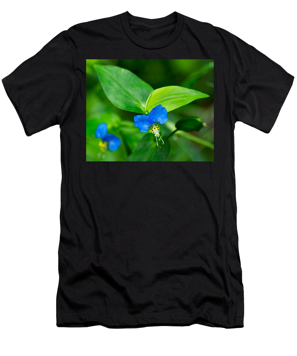 Wildflower Men's T-Shirt (Athletic Fit) featuring the photograph Asiatic Dayflower by Bill Pevlor