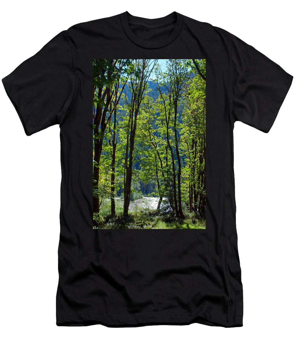 Gifford Pinchot National Forest Men's T-Shirt (Athletic Fit) featuring the photograph At Peace by Tikvah's Hope