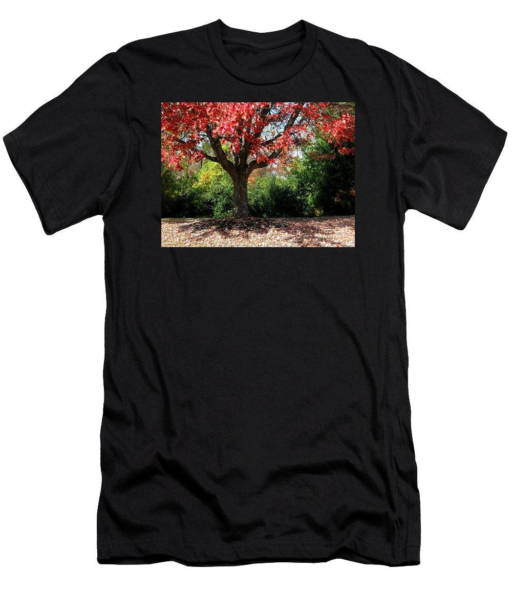 Autumn Men's T-Shirt (Athletic Fit) featuring the photograph Autumn Ablaze by Ann Horn