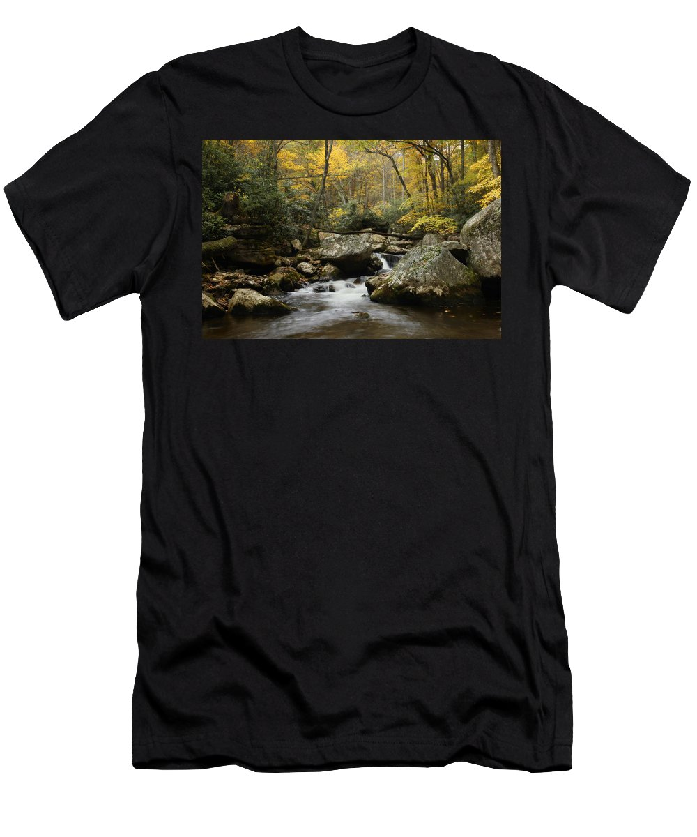 Creek Men's T-Shirt (Athletic Fit) featuring the photograph Autumn At Stony Creek by Amy Jackson