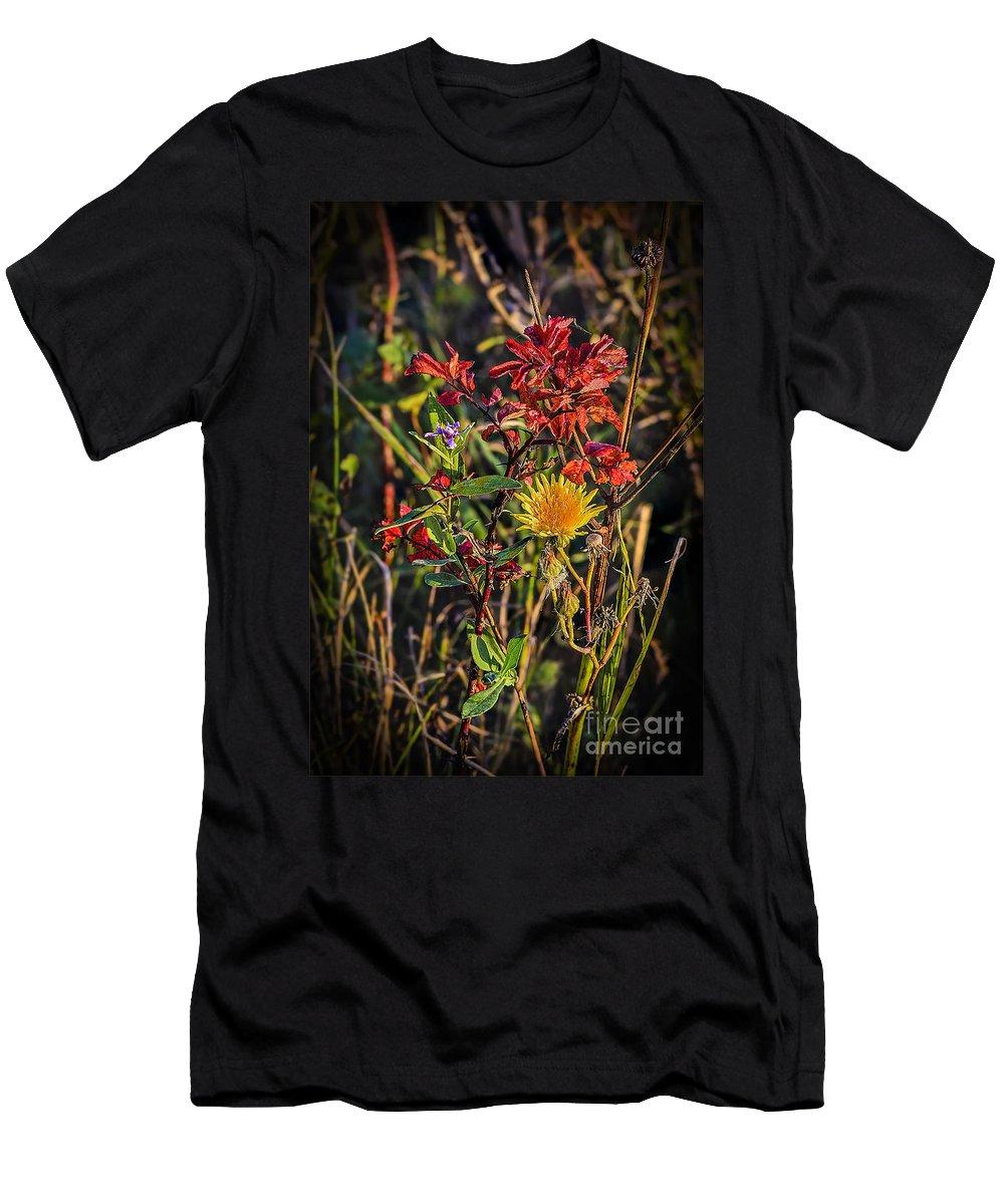 Landscape Men's T-Shirt (Athletic Fit) featuring the photograph Autumn Bouquet by Viktor Birkus
