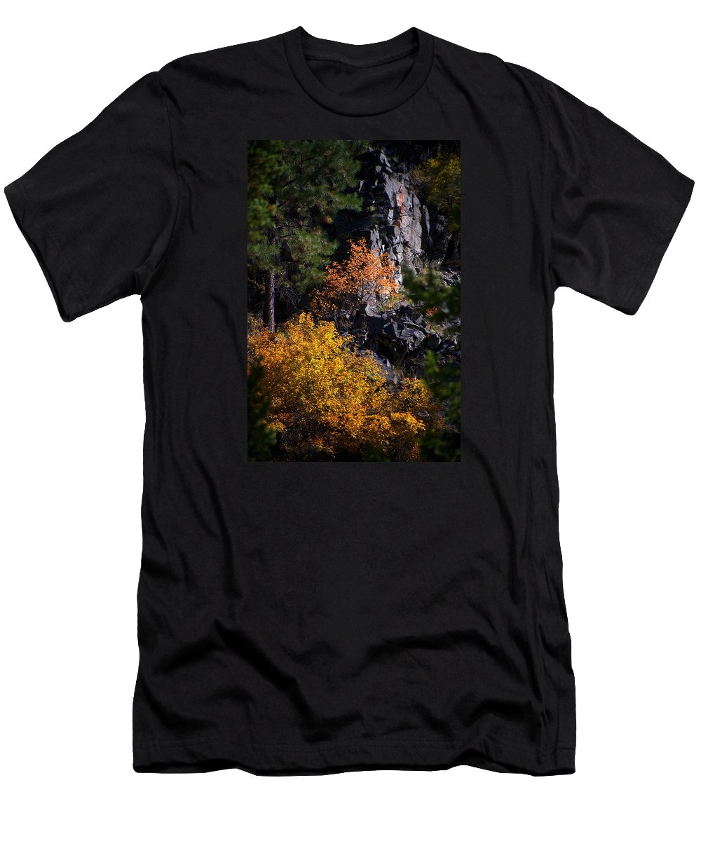 Abstract Men's T-Shirt (Athletic Fit) featuring the photograph Autumn Colors 2 by Newel Hunter