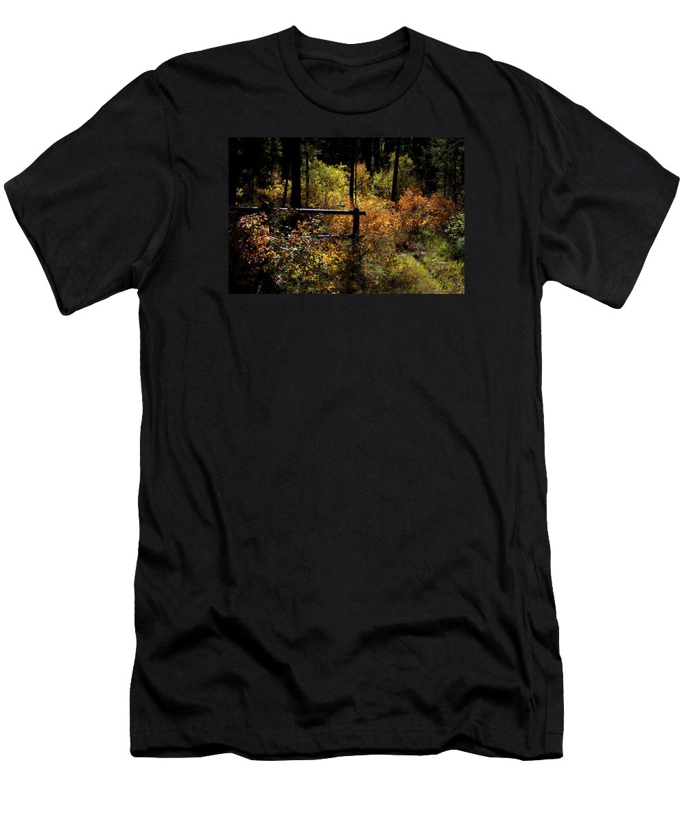 Abstract Men's T-Shirt (Athletic Fit) featuring the photograph Autumn Colors 3 by Newel Hunter