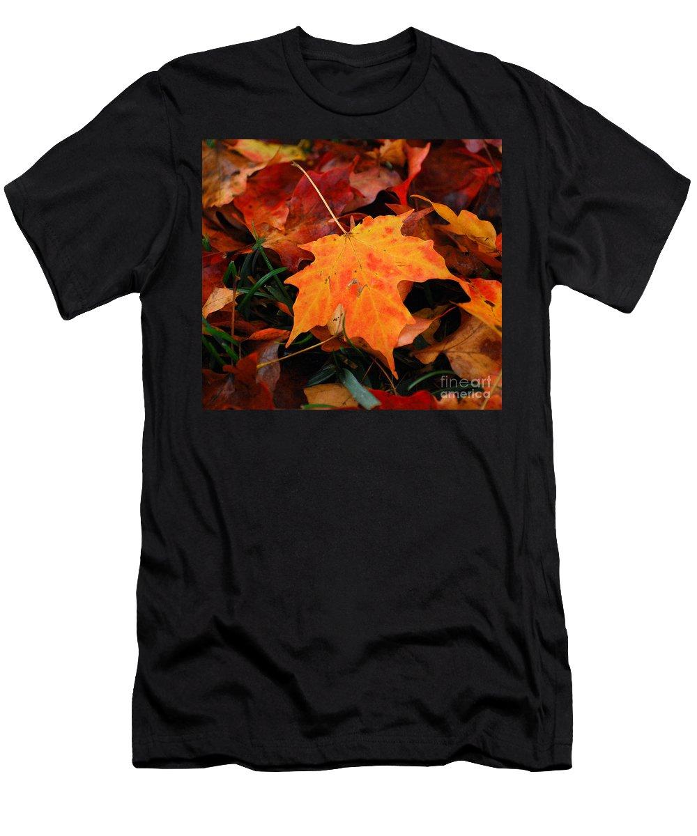 Autumn Men's T-Shirt (Athletic Fit) featuring the photograph Autumn Palette by Kerri Farley