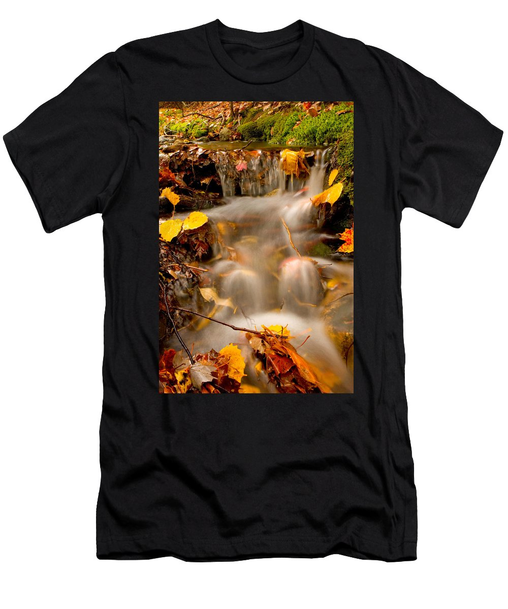 Landscape Men's T-Shirt (Athletic Fit) featuring the photograph Autumn Stream by Brent L Ander