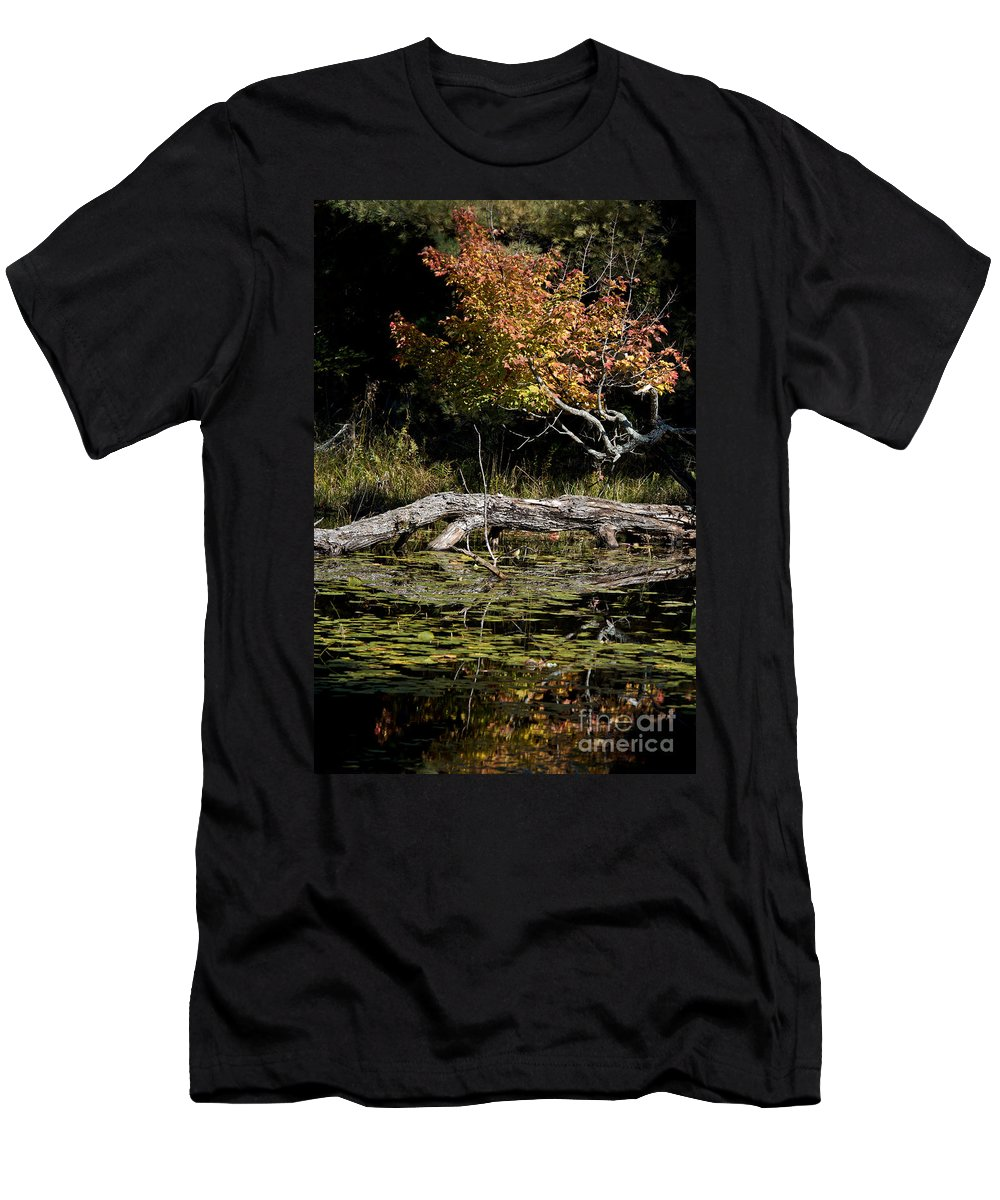 Men's T-Shirt (Athletic Fit) featuring the photograph Autumn Swamp by Cheryl Baxter