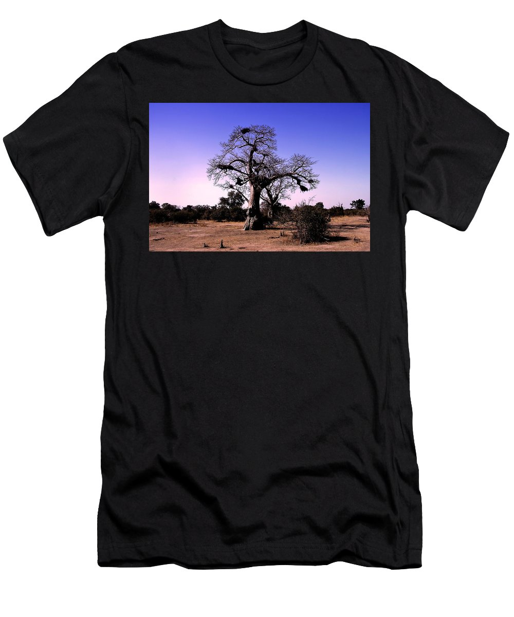 Baobab Tree Men's T-Shirt (Athletic Fit) featuring the photograph Babobab Tree by Martin Michael Pflaum