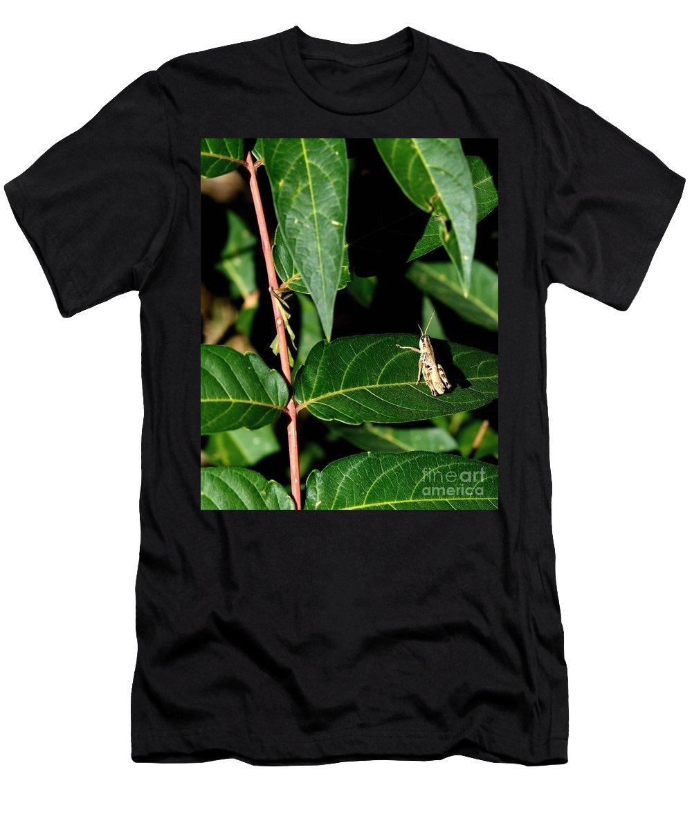 Digital Color Photo Men's T-Shirt (Athletic Fit) featuring the digital art Backyard Hopper by Tim Richards