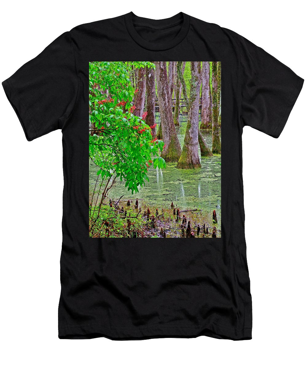 Bald Cypress And Red Buckeye Tree At Mile 122 Of Natchez Trace Parkway Men's T-Shirt (Athletic Fit) featuring the photograph Bald Cypress And Red Buckeye Tree At Mile 122 Of Natchez Trace Parkway-mississippi by Ruth Hager
